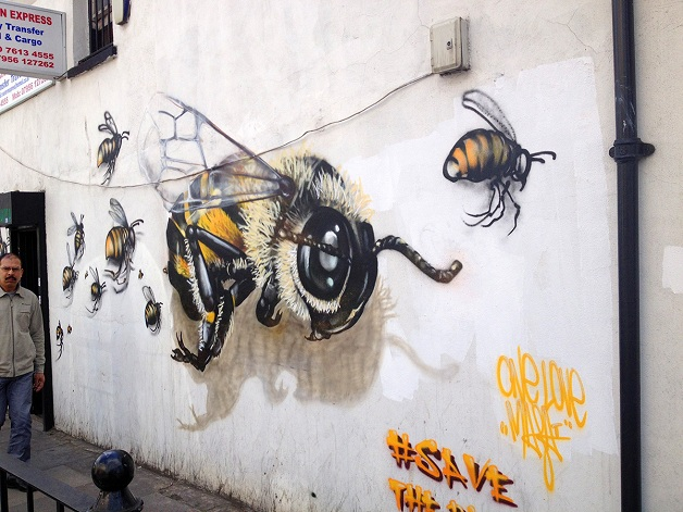 bees 004
