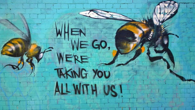 bees 011